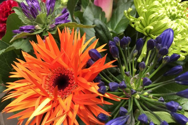 Particulier abonnement Florista by Pieta